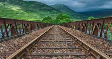 Brücke zum Studiengang