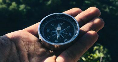 Kompass für die Studienwahl